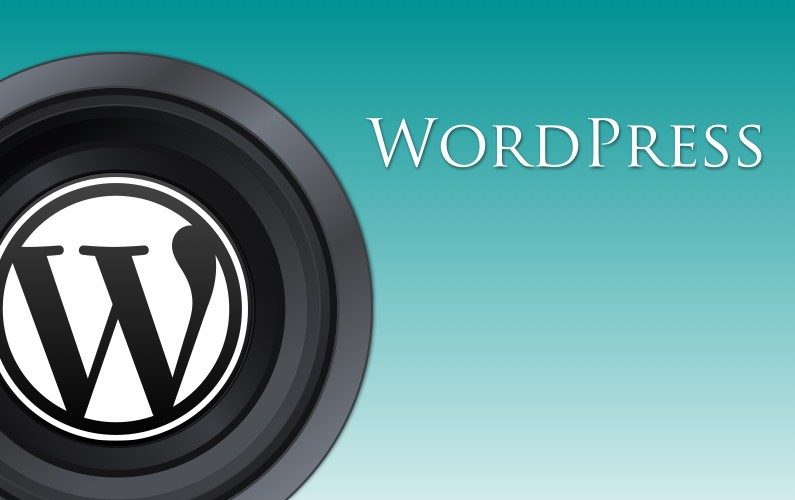 WordPress for Photographers : Essentials